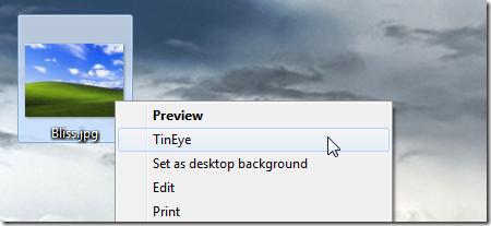 TinEye Client Screenshot